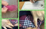 یادگیری مهارت بستن دکمه و بند کفش بدون استفاده از انگشتان/ پایه سوم